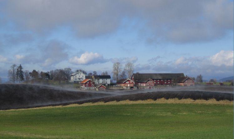 Mitarbeiterin / Mitarbeiter auf Demeter Gemischtbetrieb in Norwegen gesucht
